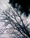 llovera_04.jpg