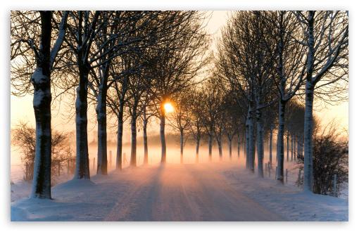 Sol de invierno